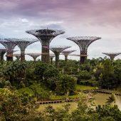 Botanic Gardens, Singapore