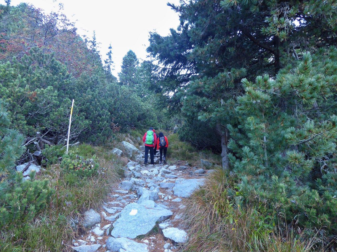Hiking path to Skok Waterfall, Tatra Mountains, Slovakia