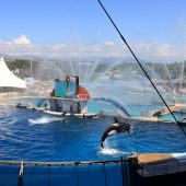 Marineland of Antibes, Cities in France