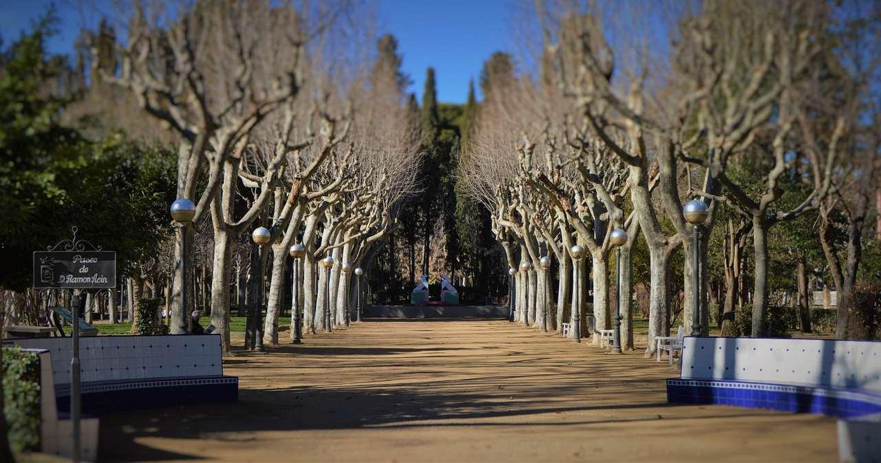 Parque Miguel Servet, Huesca, Spain