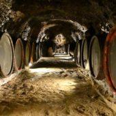 Tokaj Macik WInery, Tokaj Wine Region, Slovakia