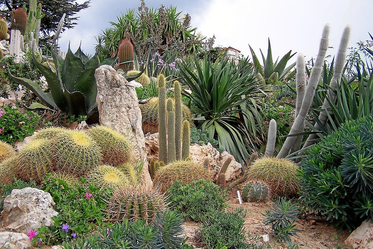 Jardin botanique d'Èze, La Turbie, France