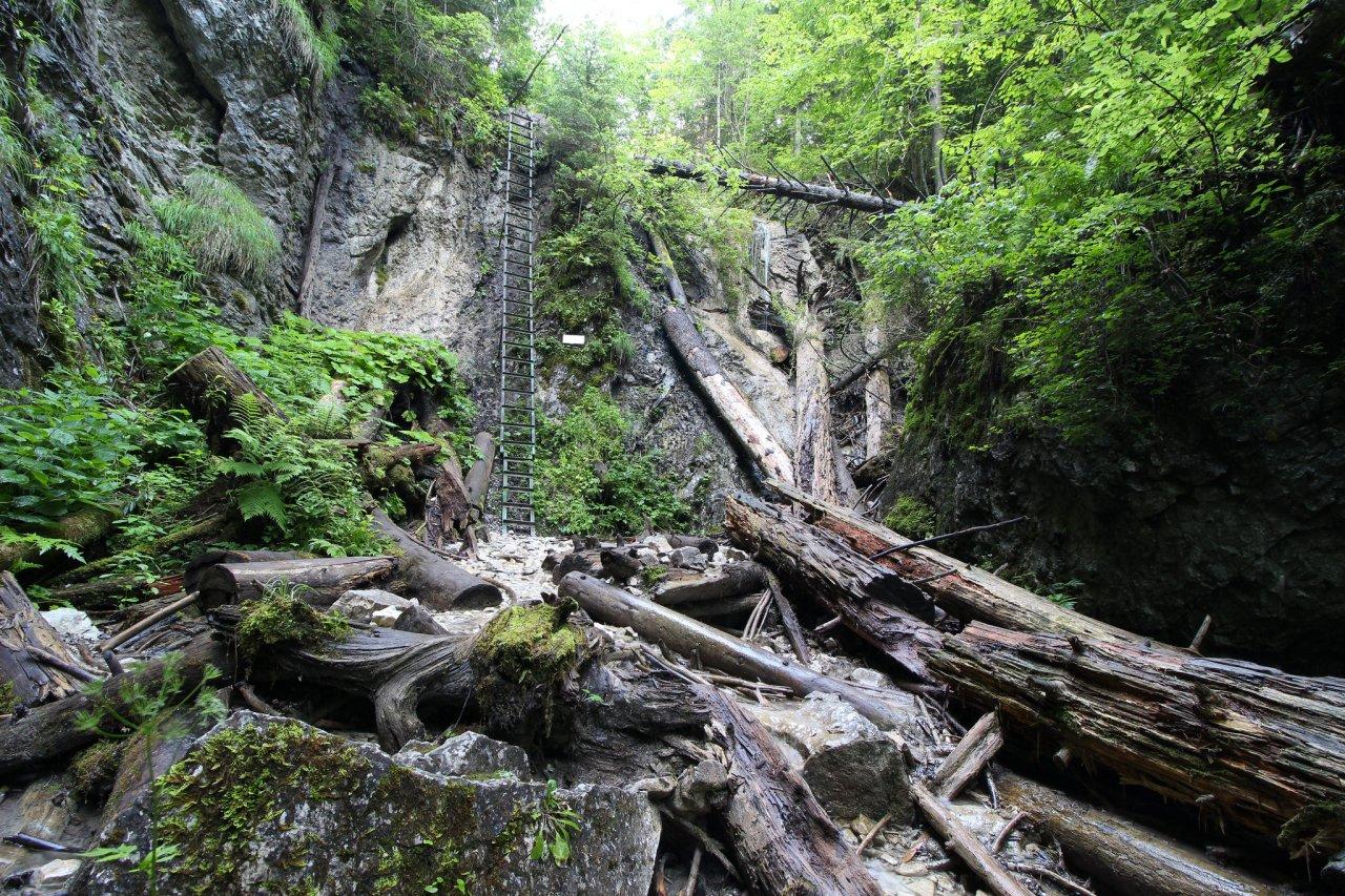 Kláštorská gorge, Slovak Paradise National Park, Slovakia 2