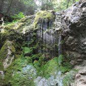 Kláštorská gorge, Slovak Paradise National Park, Slovakia 3