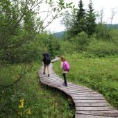 Mokrade Hnilca educational walkway, Slovak Paradise National Park, Slovakia