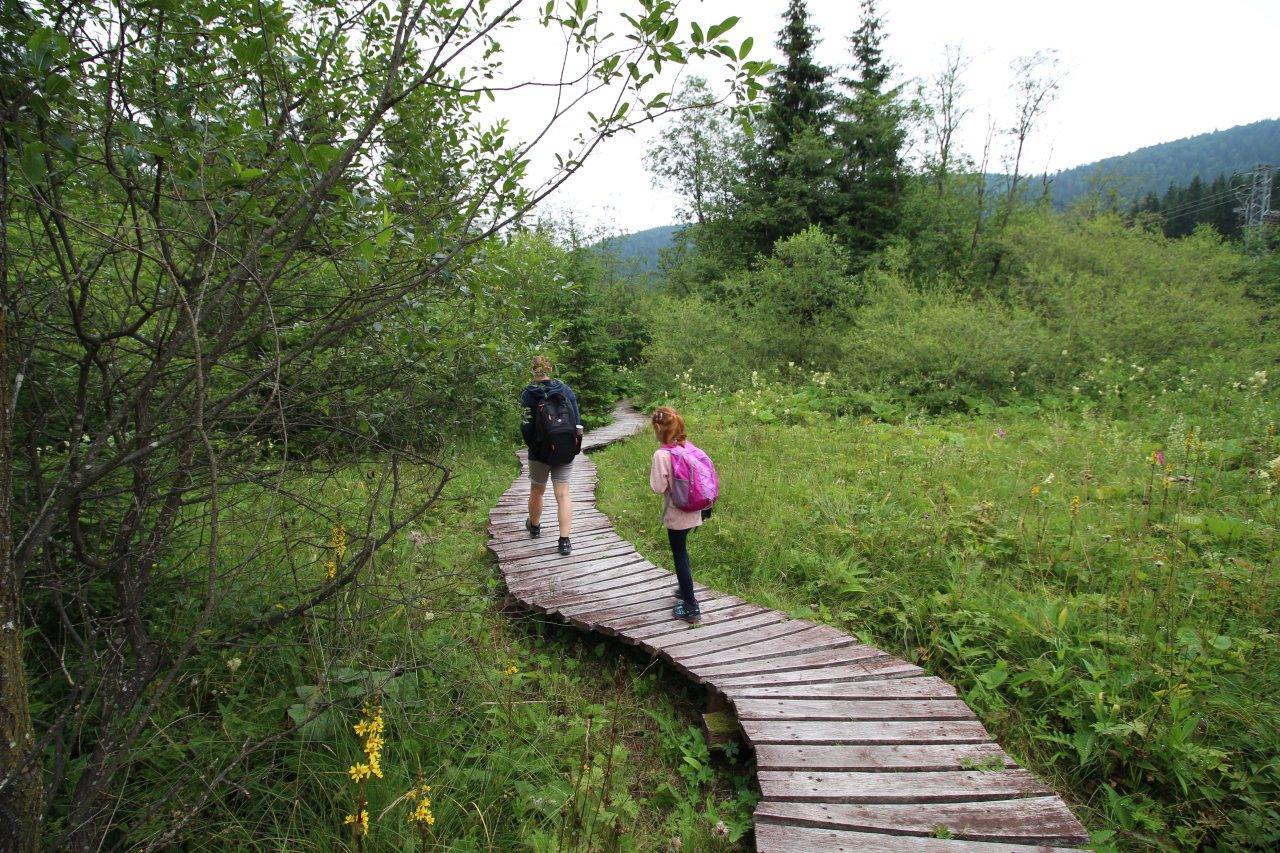 Mokrade Hnilca educational walkway, Slovak Paradise National Park, Slovakia