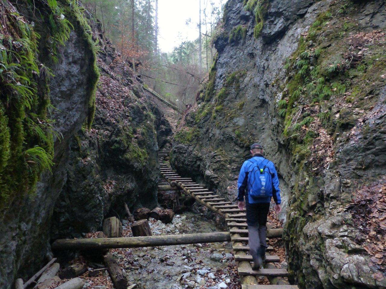 Suchá Belá gorge, Slovak Paradise National Park, Slovakia 3