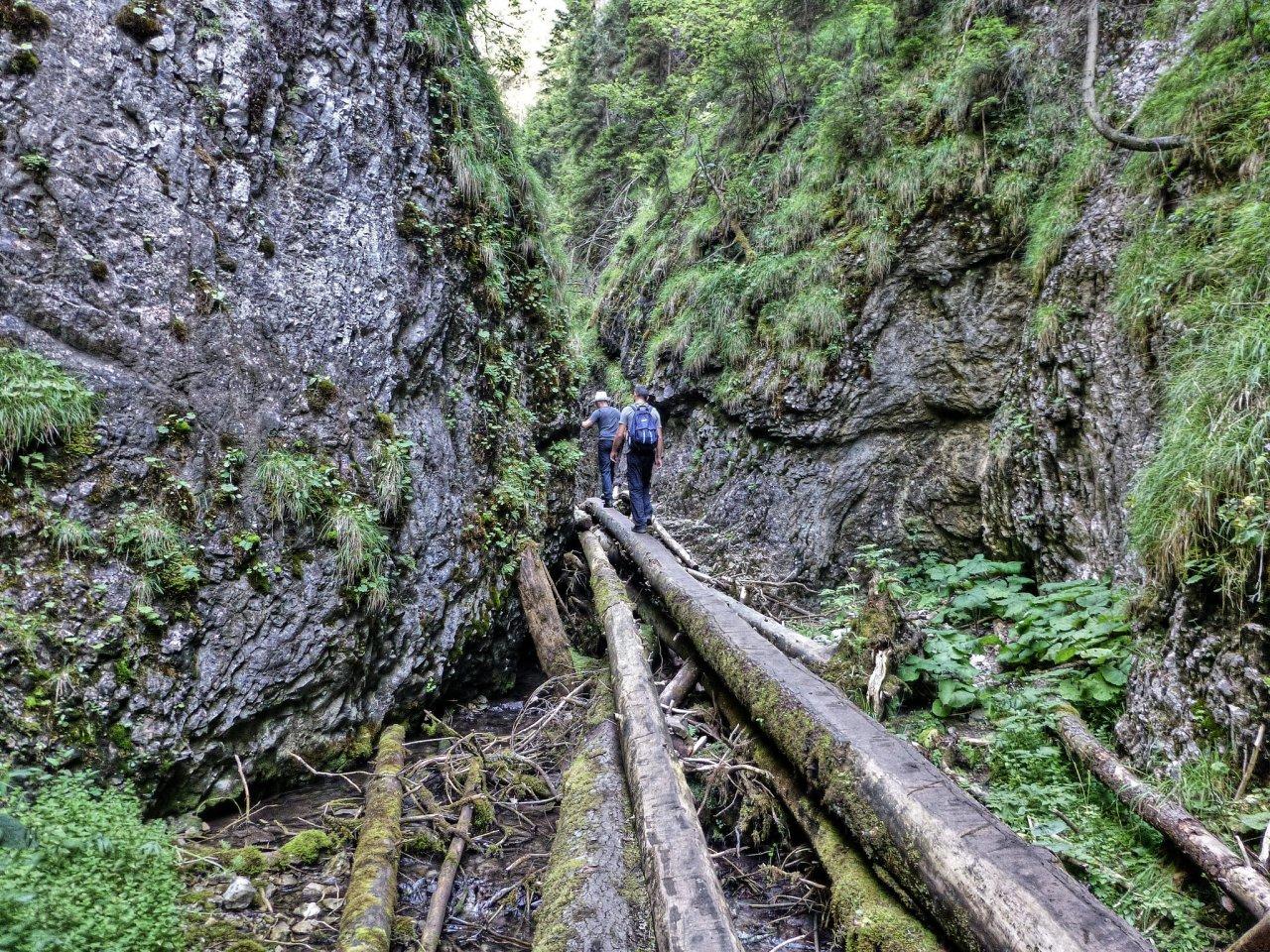 Veľký sokol gorge, Slovak Paradise National Park, Slovakia 3