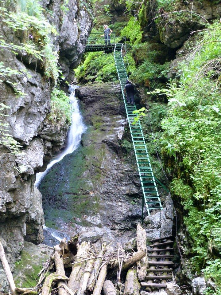 Veľký sokol gorge, Slovak Paradise National Park, Slovakia 5