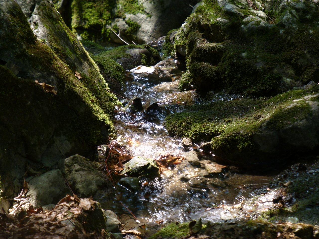 Zejmarská gorge, Slovak Paradise National Park, Slovakia 2