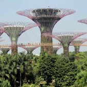 Gardens by the Bay, Top tourist attractions in Singapore