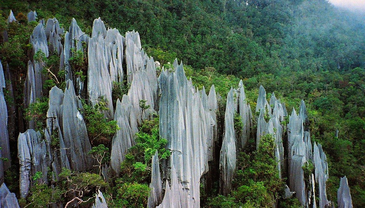 Gunung Mulu NP, Malaysia