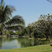 Lumpini Park, Things to do in Bangkok - Tourist Attractions, Thailand