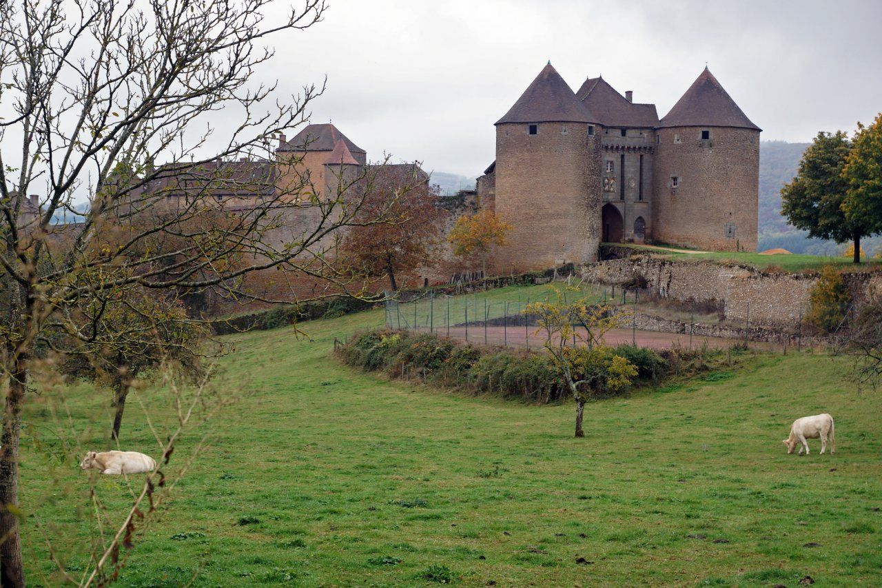 Berze-le-Chatel, Castles in France