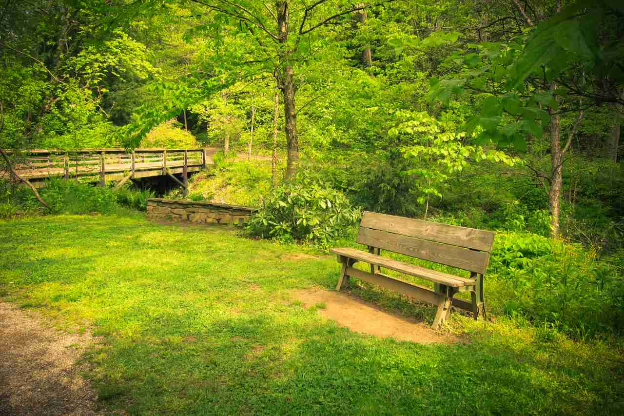 Botanical Gardens, Asheville, North Carolina, Visit in USA