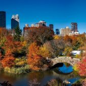 Central Park, Attractions in New York, Visit in USA
