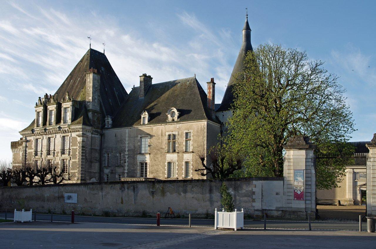 Chateau d'Azay-le-Ferron, Castles in France
