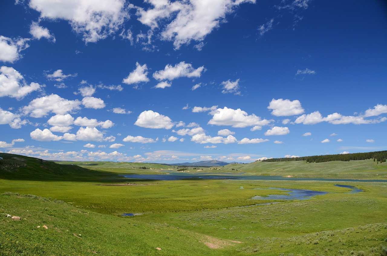 Hayden Valley, Yellowstone National Park,Wyoming, Montana, and Idaho, Visit in USA