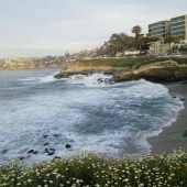 La Jolla Cove, San Diego, California, Visit in USA