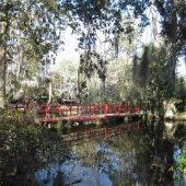 Magnolia Plantation and Gardens, Charleston, South Carolina, Visit in USA