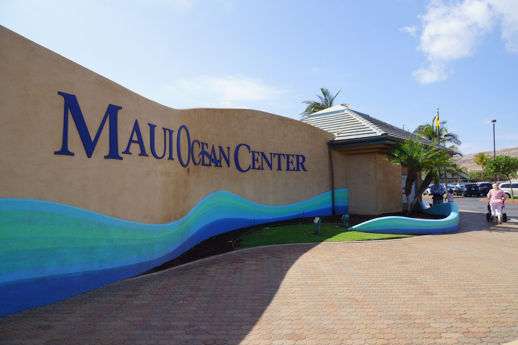 Maui Ocean Center, Hawaii, Visit in USA