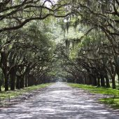 Savannah, Georgia, Best places to visit in USA