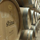 Stina Winery, Bol, Croatia