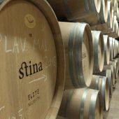Stina Winery, Bol, Croatia