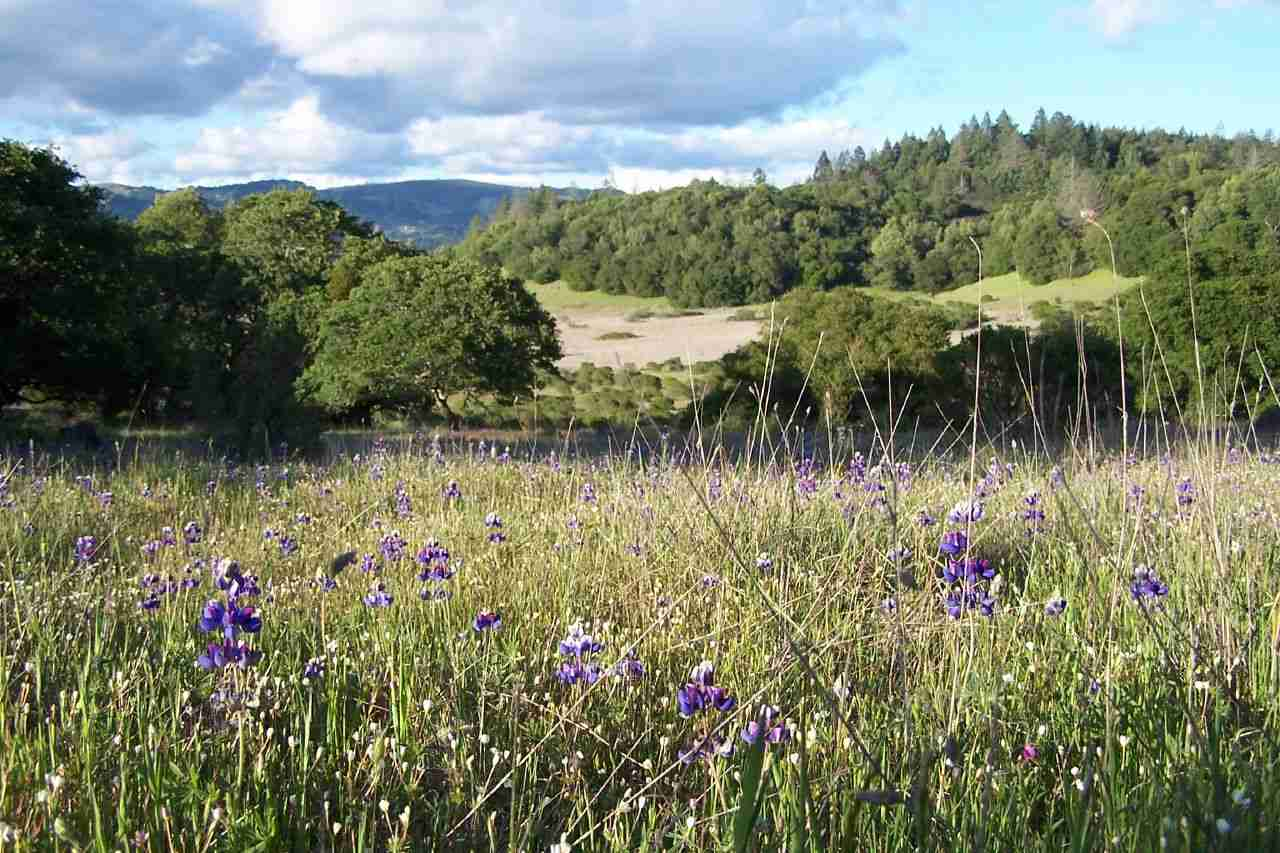 Trione-Annadel State Park,  Sonoma, California, Visit in USA