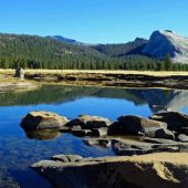 Tuolumne Meadows, Yosemite National Park, California Visit in USA