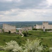 Chateau-Gaillard, Castles in France