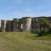 La Ferte-Milon, Castles in France