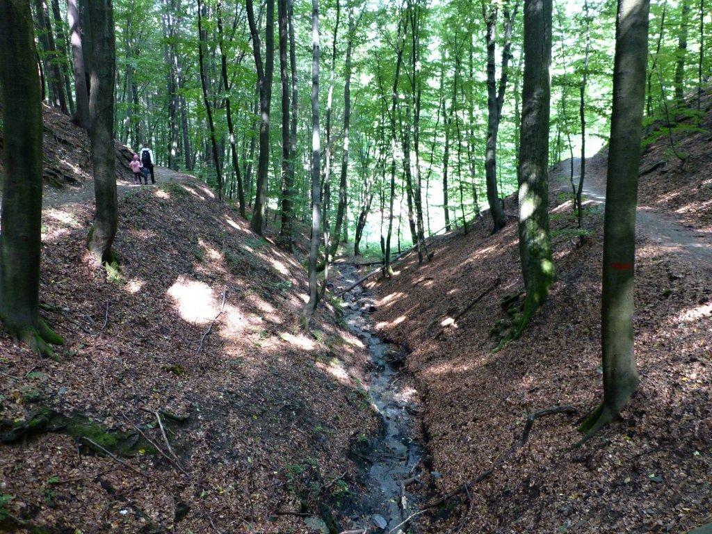 Cermel Forest and Alpinka Recreation Area, Kosice, Slovakia