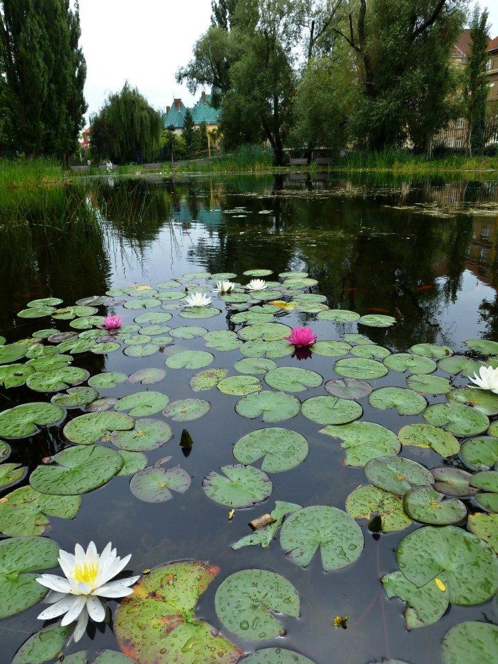 City park, Kosice, Slovakia