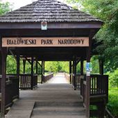 Bialowieza National Park Tours, Poland