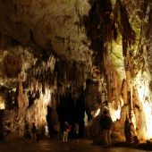 Postojna Cave, Best Places to Visit in Slovenia