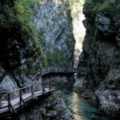 Vintgar Gorge, Best Places to Visit in Slovenia