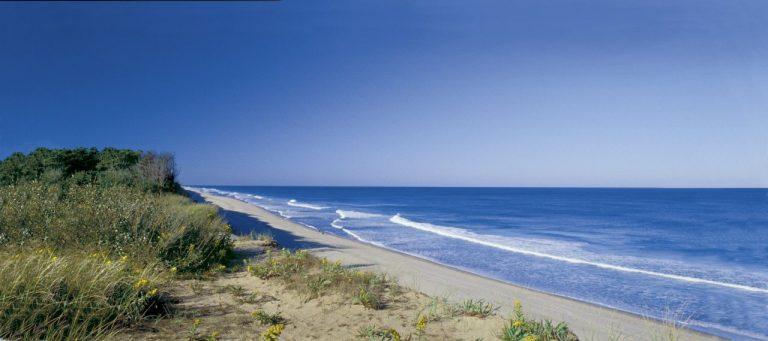 Coast Guard Beach, Massachusetts, Best Beaches in the USA