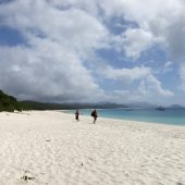 Whitehaven Beach, Best Beaches in Australia