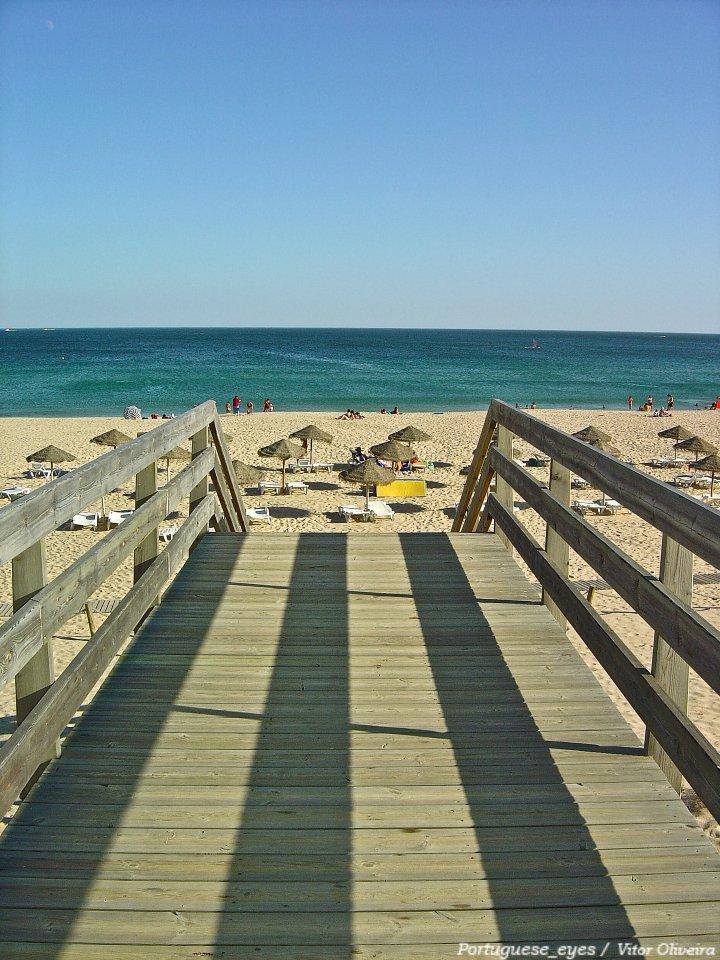 Meia Praia, Best Beaches in Portugal