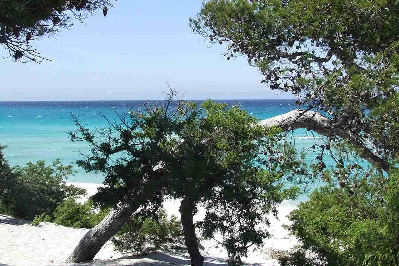 Plage de Saleccia, Corse-du-Nord, Best Beaches in France