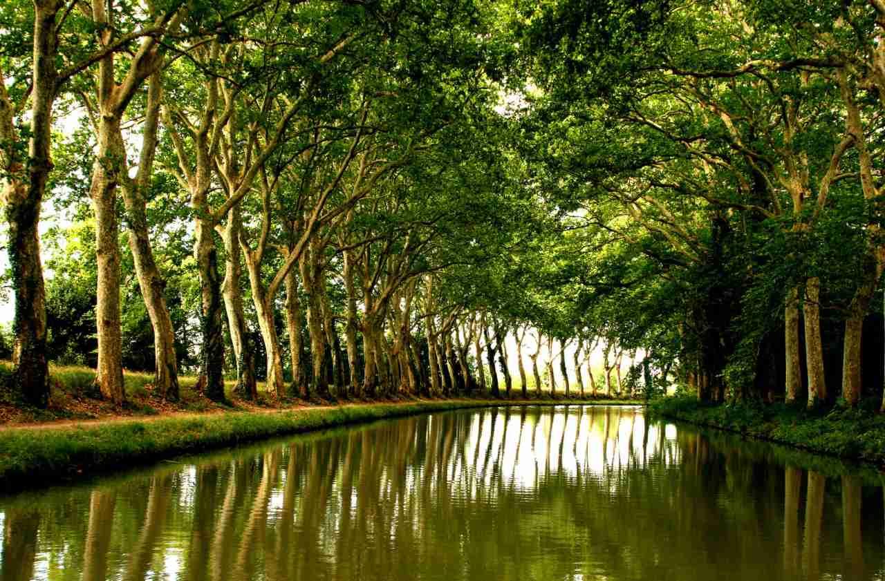 Canal du Midi, Unesco France