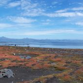 Kerguelen Islands,French Austral Lands and Seas, Unesco France